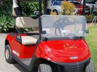 New Golf Carts 2