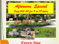 2020-07-Afernoon-Special-16-Flyer-S